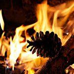 encender-barbacoa-con-piñas