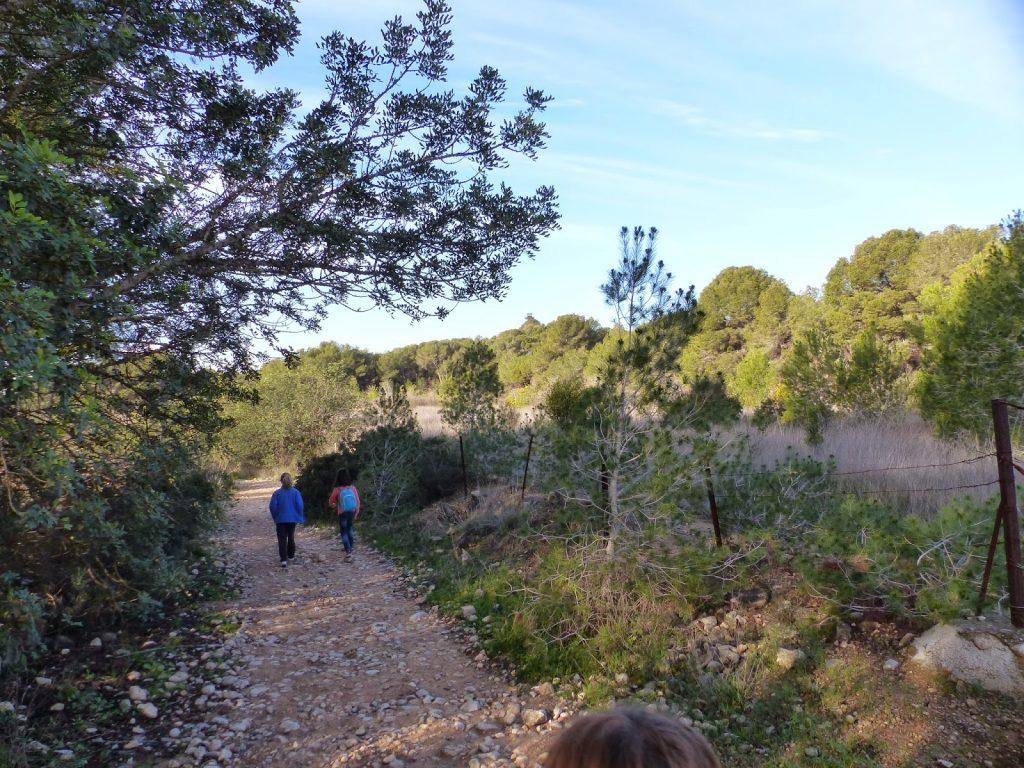 Parque de la Vallesa